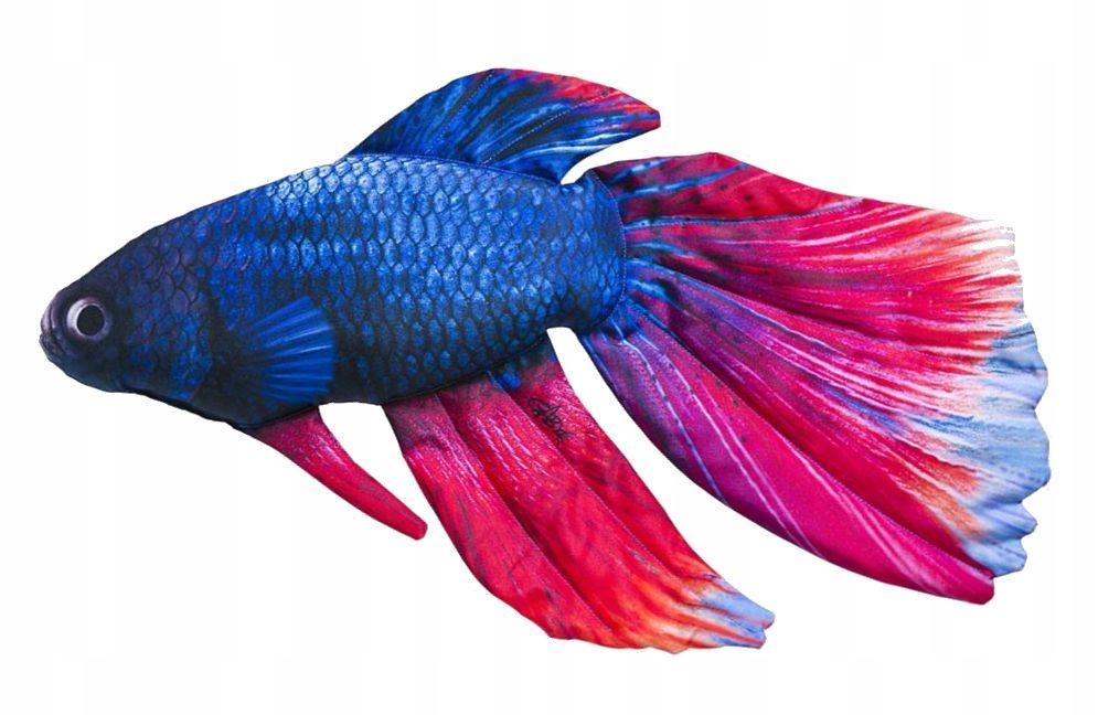 GABY vankúšik na hračky pre ryby WARRIOR 53cm