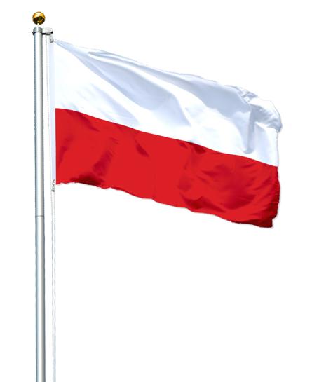 Maszt 1 3 Aluminiowy Flagowy 6 20m Flaga Polska 7195449887 Allegro Pl