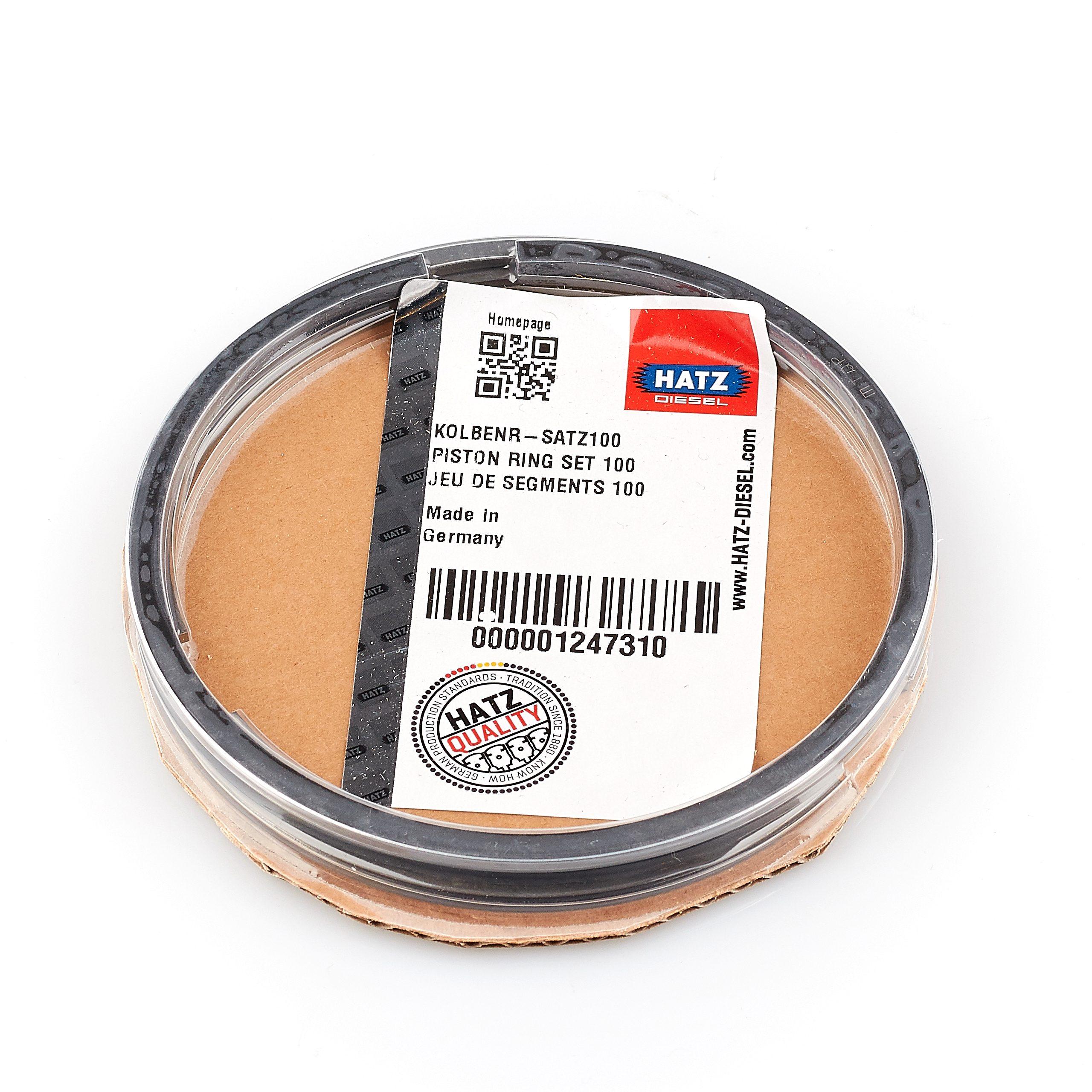 Поршневые кольца HATZ 1D81 STD (3,5 мм) 01247310