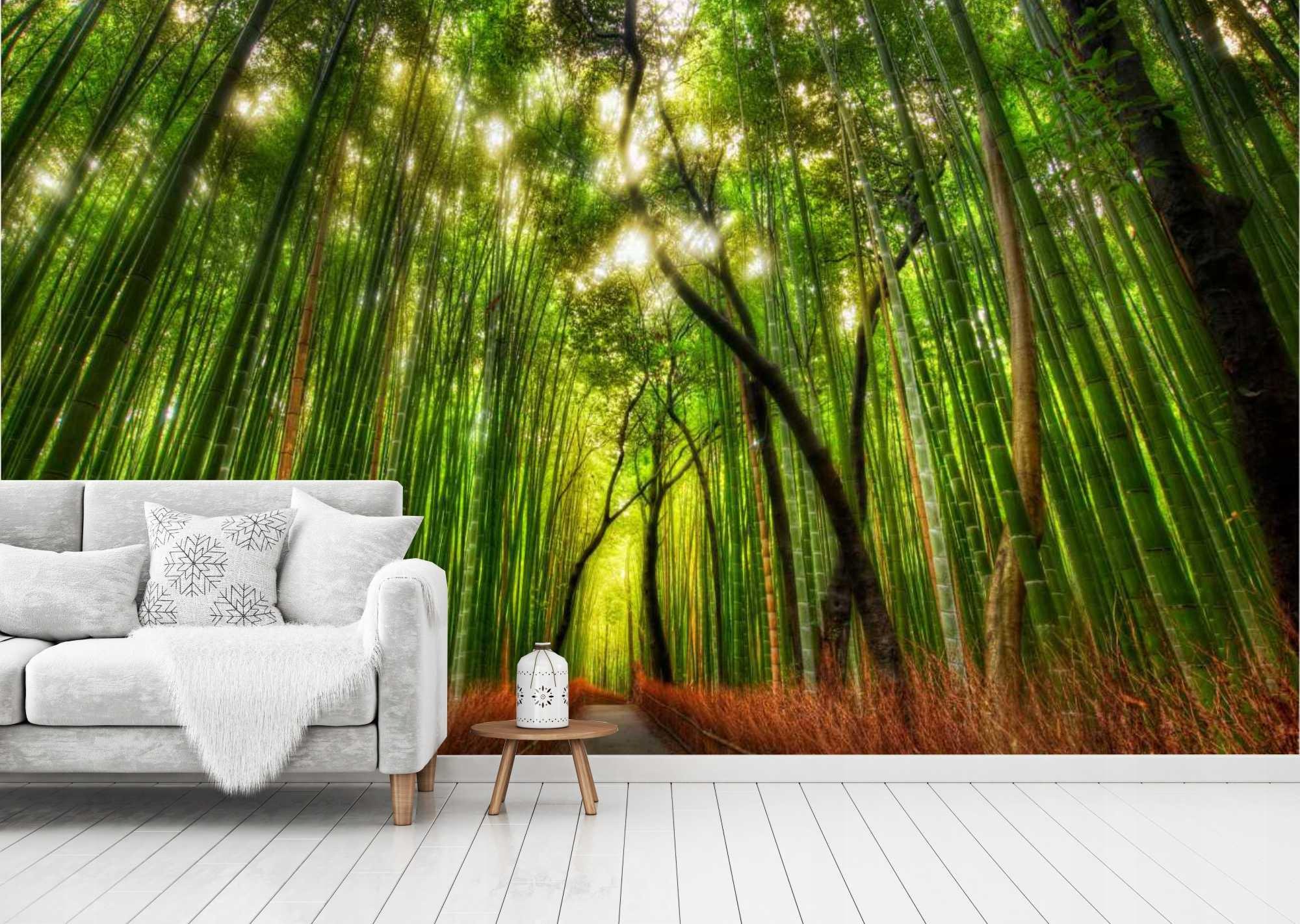 некоторых фотообои лес интернет магазин загрузите