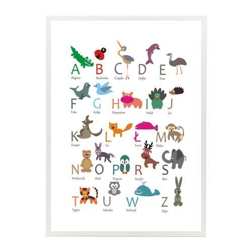 Plakat Dla Dzieci Alfabet Zwierzęta Duży 50x70cm