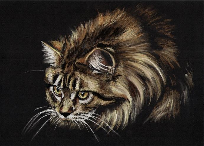 Rysunek Obraz Kot Kotek Na Prezent 7145496862 Oficjalne Archiwum
