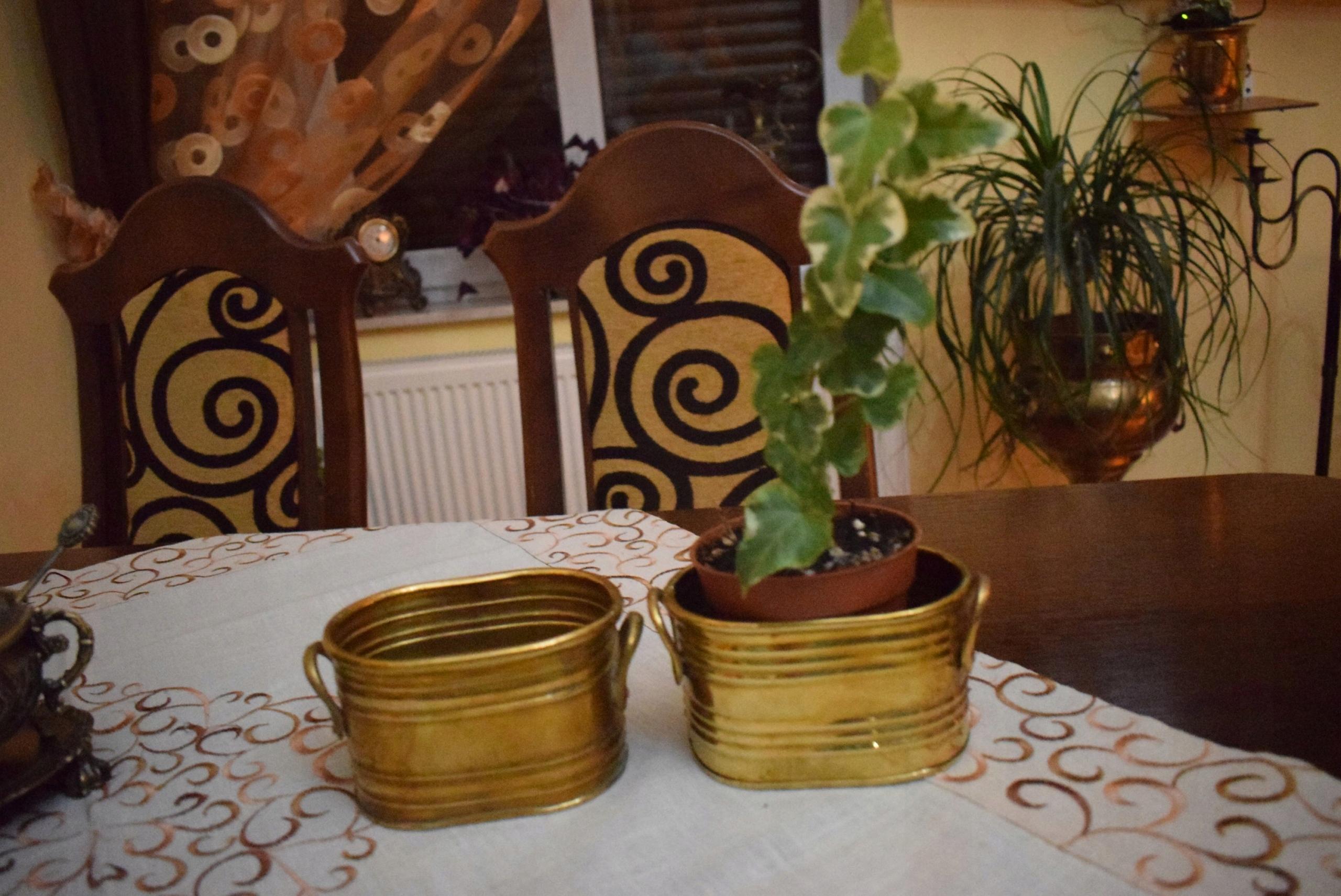 Kpl2sztowalne Małe Doniczki Z Mosiądzu Kaktus