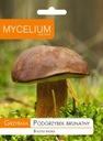 Myzel braune Pilze Pilze