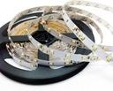 Taśma LED 5m rolka 300 LED 3528 IP20 GW24 PROMOCJA