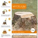 ЖИВОЙ МИЦЕЛИЙ для распределение стволов деревьев, компостирования