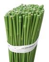 Bambus POLE Powl. PVC 75 cm 8/10/100 Stück /