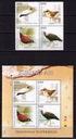 Indonezja`2014-Ptaki wodne**