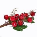 Róża dzika na gałązce (owoce, sprężynki, listki)