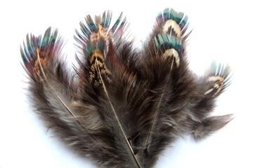 Perie prírodné dekoratívne dekorácie bažant