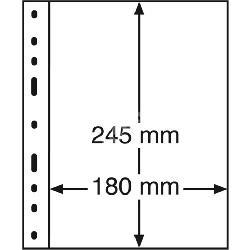 Karty / Strony na banknoty Leuchtturm Optima 1C