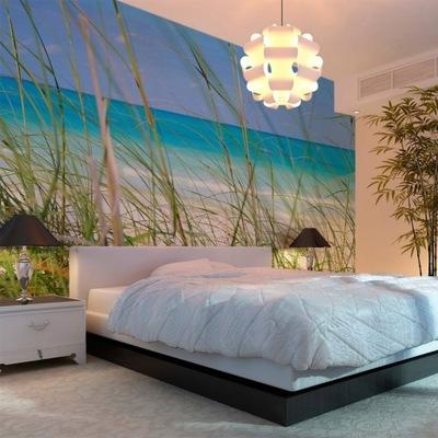 Fototapeta - Tropical plaża trawy 450X270cm