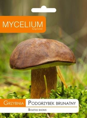МИЦЕЛИЙ - БУРЫЙ польский гриб Грибы в Саду