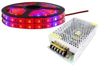 KIT 300 LED pásy svetla IP65 RAST rast rastlín 6m