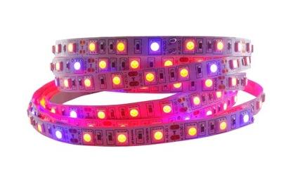 LED svetelné Pásy 5050 300 RAST rast rastúcich rastlín 0,5 m