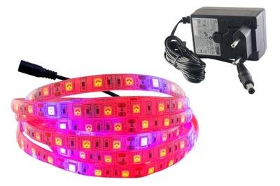 NASTAVIŤ pásky IP65 300 LED RAST rast rastlín 2,5 m