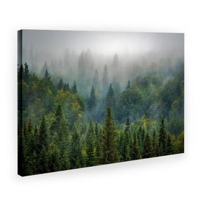 Картина на холсте Canvas: Лес В Тумане 80x120 #?