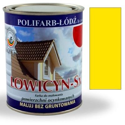 Lowicyn Sx KADMIA farba ŽLTÁ LESK RAL1021 10 L