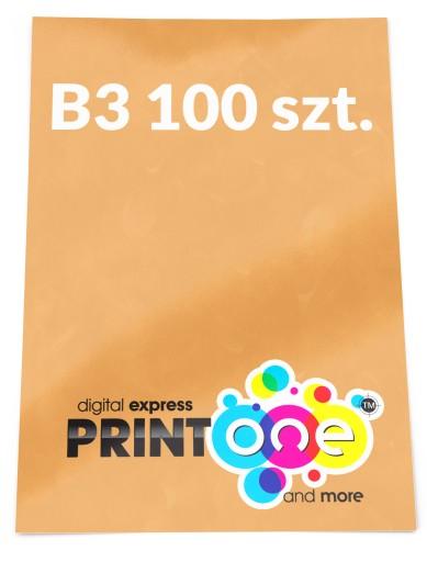 Plakaty B3 100 Szt Plakat Pełen Kolor 130g